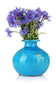 Beautiful bouquet of cornflowers in vase, isolated on white — Stock Photo