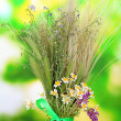 Stock Photo: Bouquet of wild flowers and herbs, on bright background