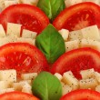 Cheese mozzarella with vegetables in the plate close-up - Stock Photo