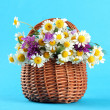 Stock Photo: Beautiful wild flowers in basket, on blue background