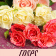 Beautiful colorful roses close-up, on color background — Stock Photo