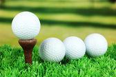 Golf balls on grass outdoor close up — Stock Photo