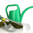 Green watering can with gardener accessories isolated on white - Стоковая фотография