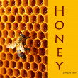 图库照片: Yellow beautiful honeycomb with honey and bee close-up background