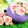 Pot with flowers on the grass on the nature background - Stock Photo
