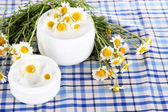 Cream with chamomile on checkered cloth background — Stock Photo