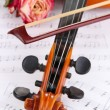 Classical violin  with dry rose on notes - Foto Stock
