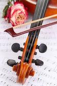Violín clásico con rosa seca en notas — Foto de Stock