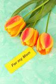 Mooi oranje tulpen op een houten achtergrond kleur — Stockfoto