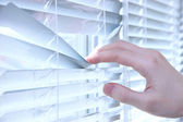 Someone looking out of window opening blinds — Stock Photo