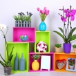 Beautiful colorful shelves with different home related objects — Stock Photo #25766109