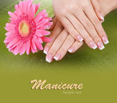 Mãos de mulher com french manicure e de flores sobre fundo verde — Foto Stock