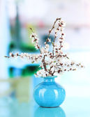 Beautiful blooming branches in vase on window background — Stock Photo