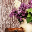 Composition with lilacs on bright background — Stock Photo #25771297