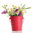 Stock Photo: Beautiful wild flowers in