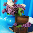 Composition with lilacs on bright background — Stock Photo #25895425