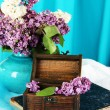 Composition with lilacs on bright background — Stock Photo #25896037