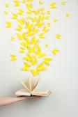 żółty motyle wylecieć z książki — Zdjęcie stockowe