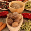 Nutmeg and other spices on sackcloth background — Stock Photo #25902877