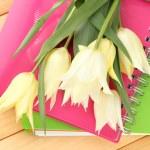 Beautiful white tulips on wooden background — Stock Photo