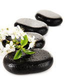 Spa stones and white flowers isolated on white — Stok fotoğraf
