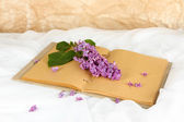 Lilacs branch on book on white fabric background — Stock Photo
