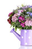 Beautiful bouquet in watering can isolated on white — Stock Photo