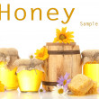 Honey in banks and barrel isolated on white — Stock Photo #26063245