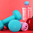 Dumbbells on red background — Stock Photo #26063629