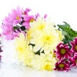 Bouquet of beautiful chrysanthemums isolated on white — Stock Photo