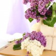 Composition with lilacs on light fabric background — Stock Photo #26065283