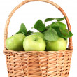 Juicy green apples with leaves in basket, isolated on white — Stock Photo #26065529