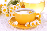 Cup of herbal tea with camomiles close up — Stock Photo