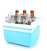 Réfrigérateur avec des bouteilles de bière et de cubes de glace isolés sur blanc de voyage — Photo