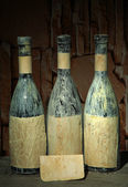 Old bottles of wine in old cellar, on dark background — Stok fotoğraf