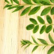 Green leaves on bamboo mat background — Stock Photo