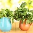 Fresh herbs in pitchers on wooden table on natural background — Stock Photo #26152293