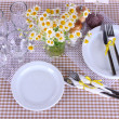 Table setting with chamomiles on checkered tablecloth — Stock Photo #26152737