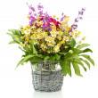 Bouquet of wild flowers in wicker vase, isolated on white — Stock Photo