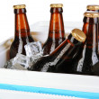 Foto Stock: Traveling refrigerator with beer bottles and ice cubes isolated on white