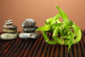 Still life with green bamboo plant and stones, on bamboo mat on color background — Stock Photo