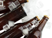 Beer bottles in ice cubes close up — Stock Photo