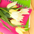 Beautiful white tulips on wooden background — Stock Photo