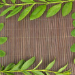 Green leaves on bamboo mat background - Stock Photo