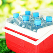 Picnic refrigerator with bottles of water and ice cubes on grass — Stock Photo #26197115