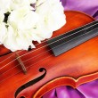 Classical violin on fabric background — Stock Photo
