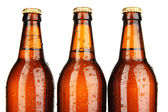 Beer bottles isolated on white — Stock Photo