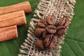 Coffee grains and cinnamon on sackcloth on green leafs close-up — Stock Photo