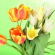 Royalty-Free Stock Photo: Beautiful white and orange tulips on color background