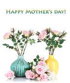 Piękne różowe i białe róże w wazonach na białym tle — Zdjęcie stockowe